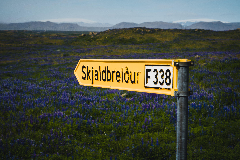 Salty Love | Haukadalur F338 Skaldbreidur